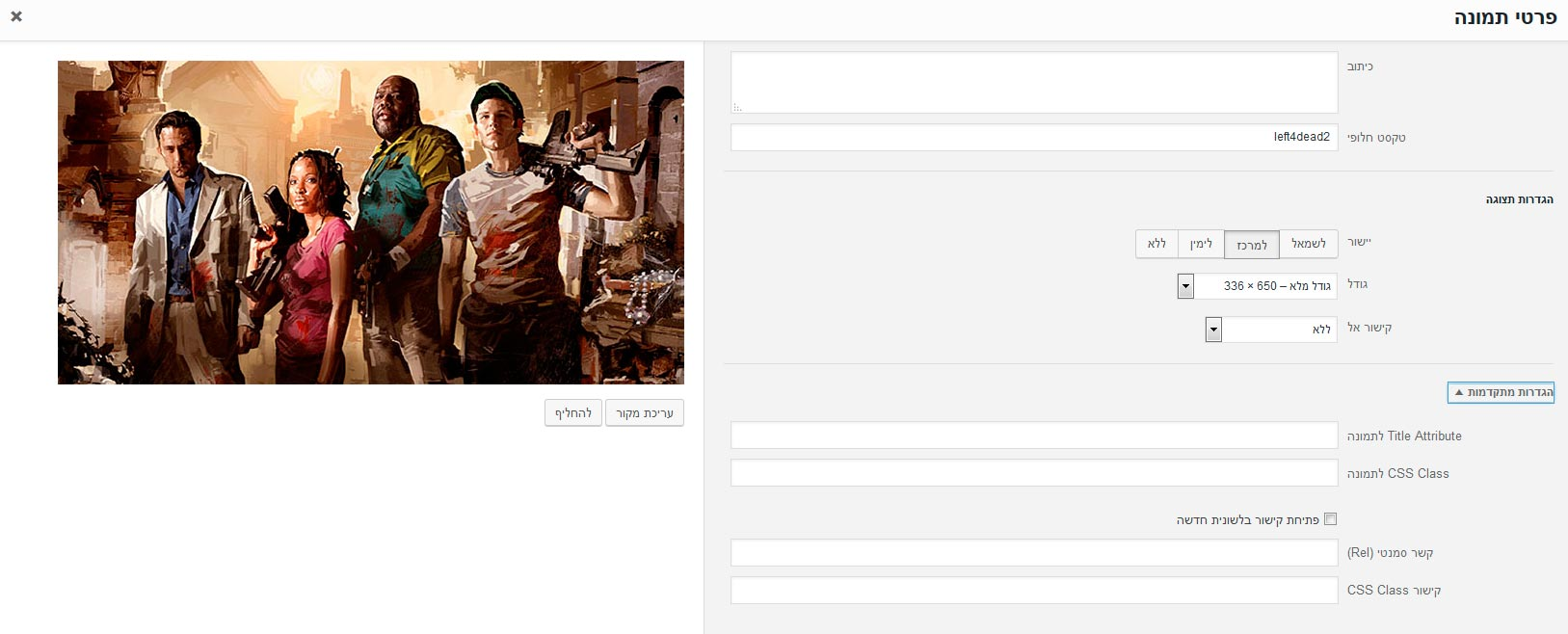 וורדפרס - מסך עריכת תמונה