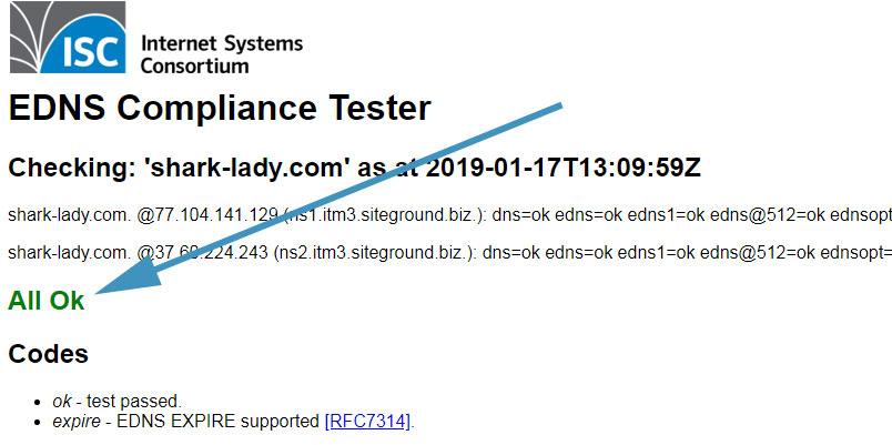 תוצאת בדיקת DNS